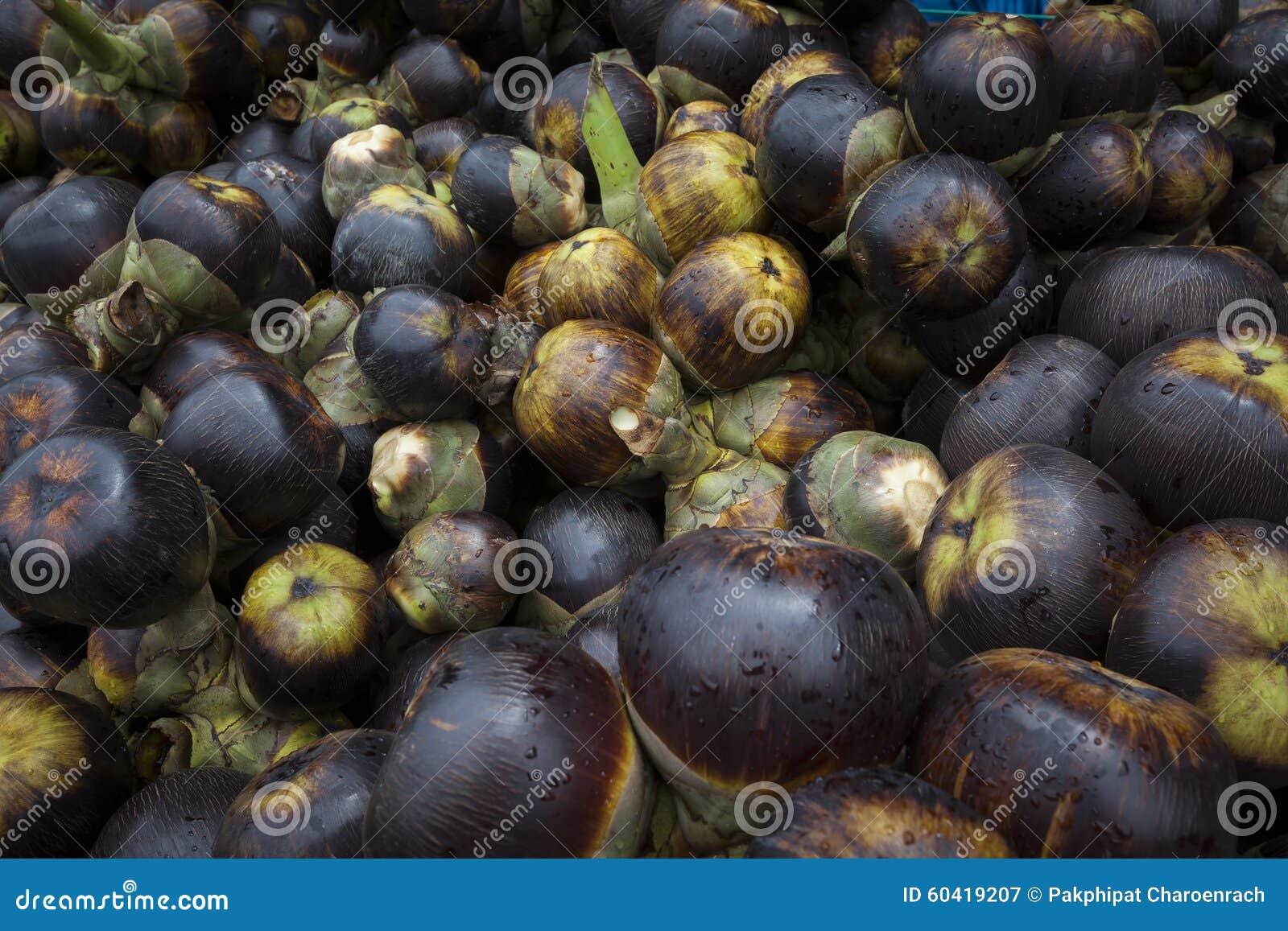 新鲜的扇叶树头榈棕榈或棕榈汁果子