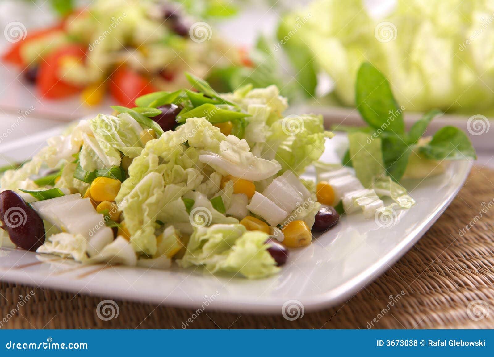 新鲜的沙拉素食主义者