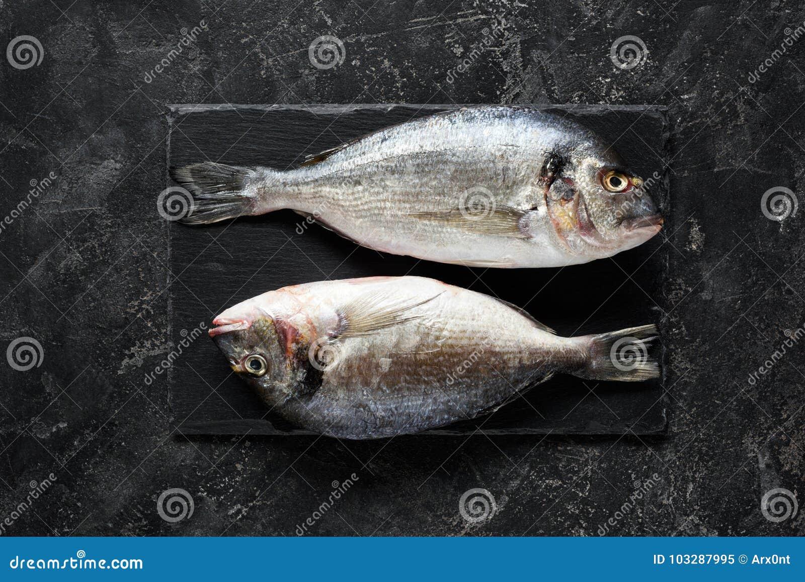 新鲜的海鲷或dorado鱼在板岩背景