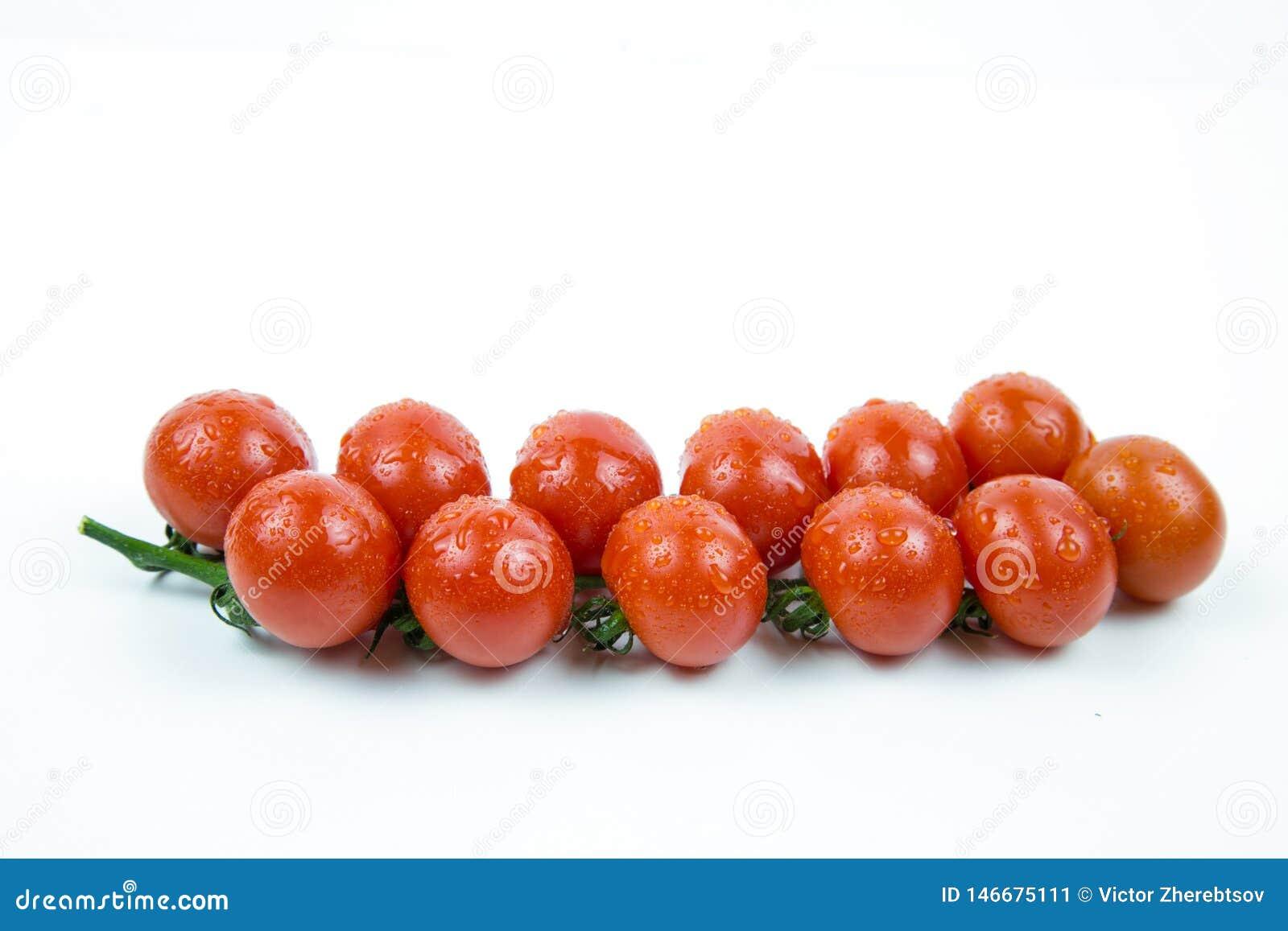 新鲜的红色蕃茄分支