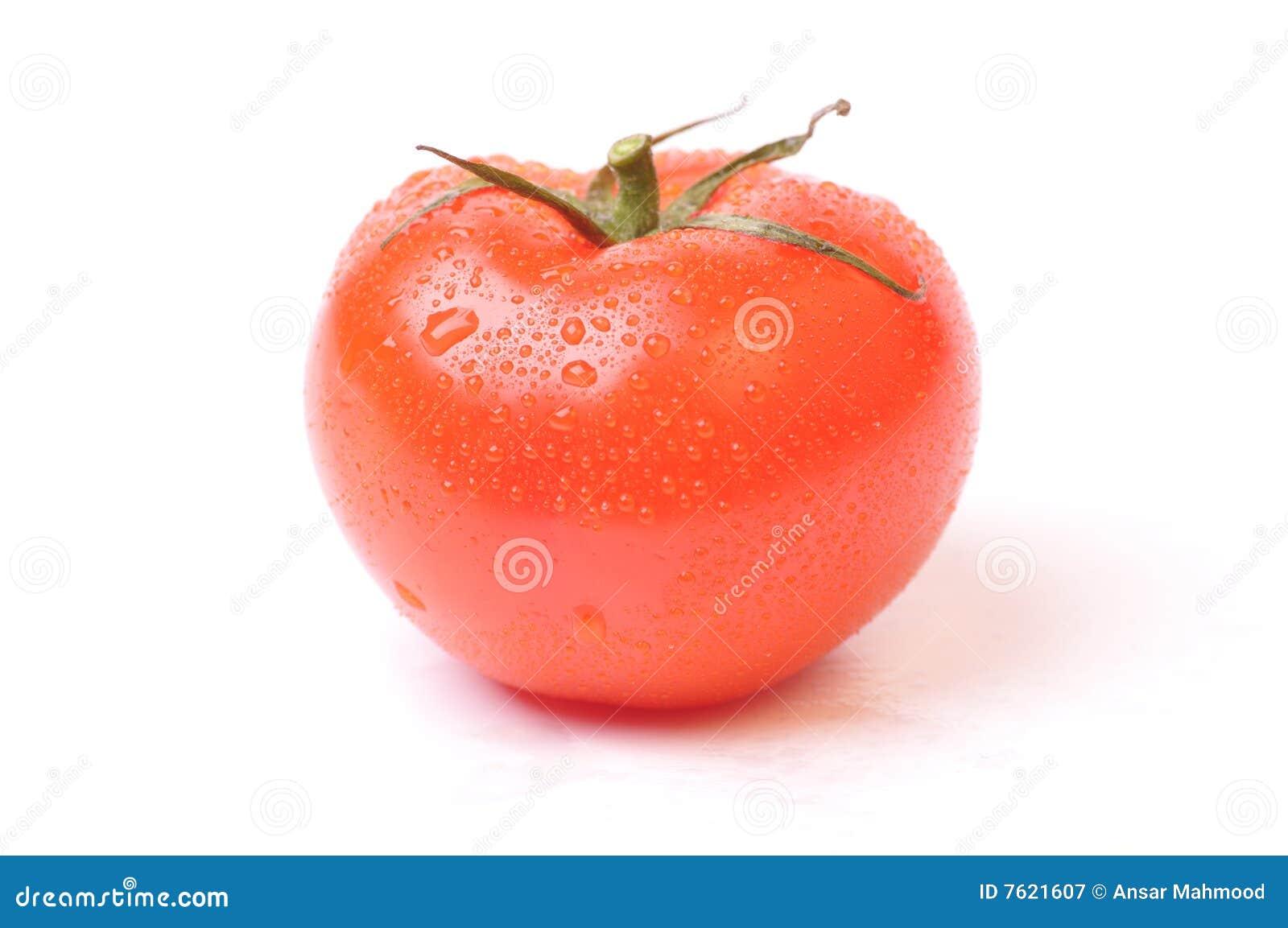 新鲜的蕃茄