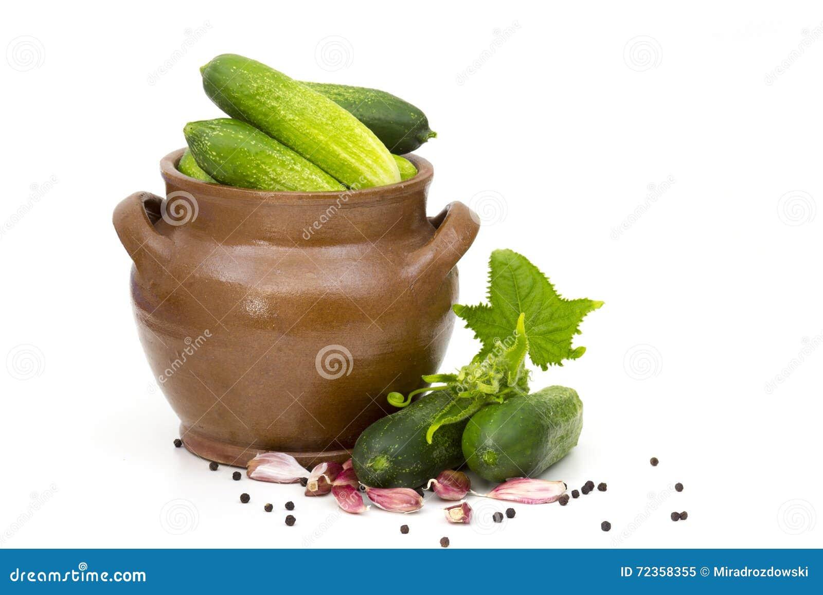 新鲜的黄瓜、香料和草本