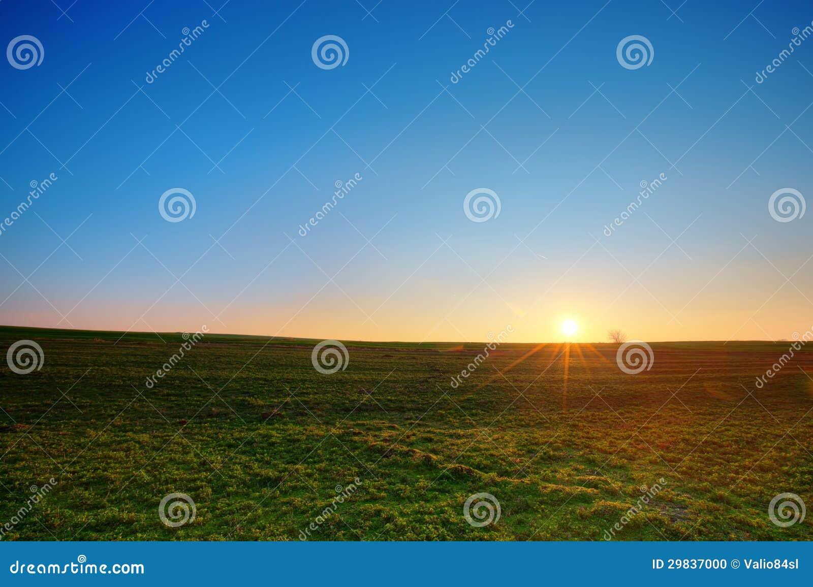 日落和绿色领域