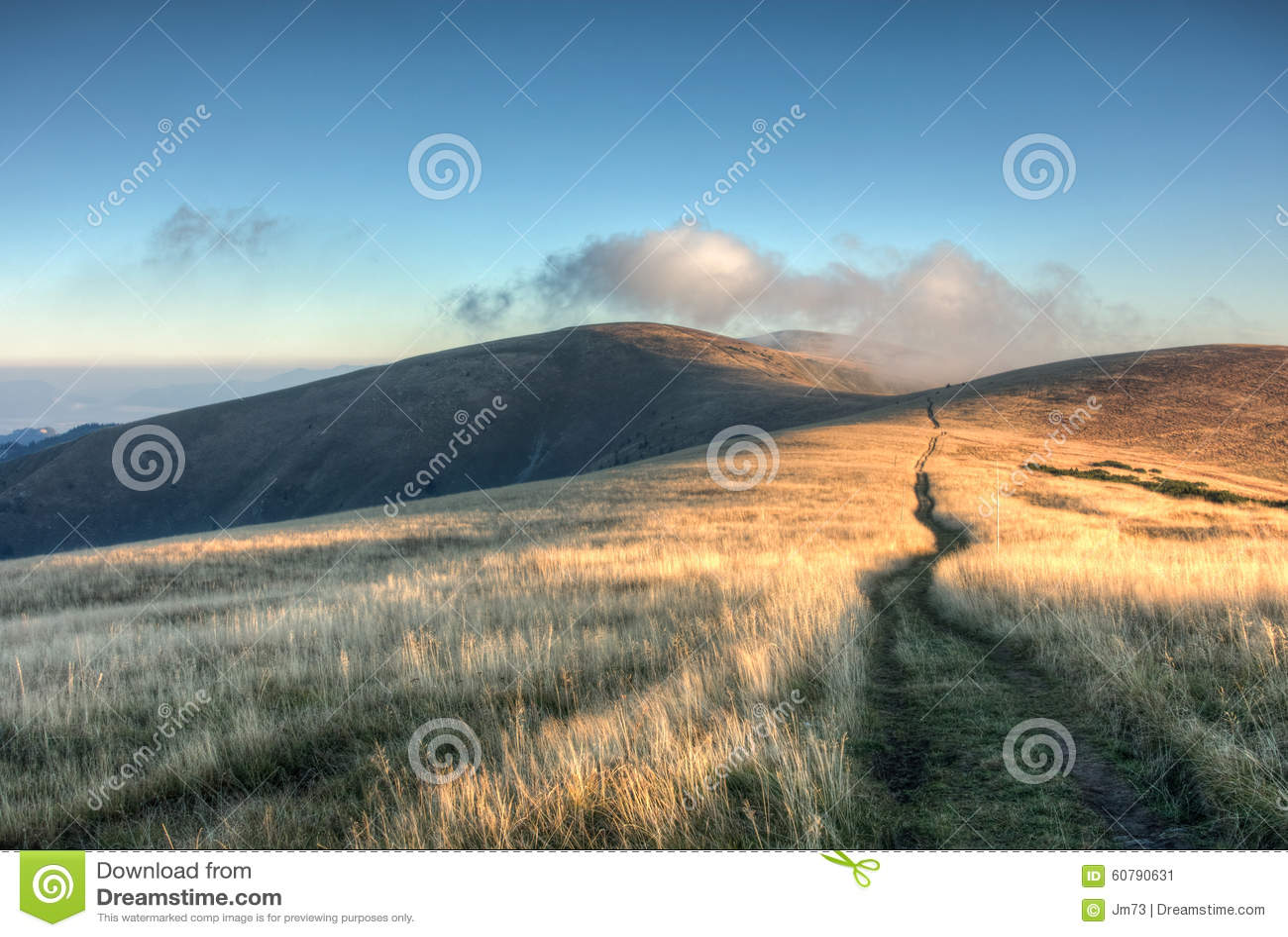 方式通过在山象草的土坎的日出