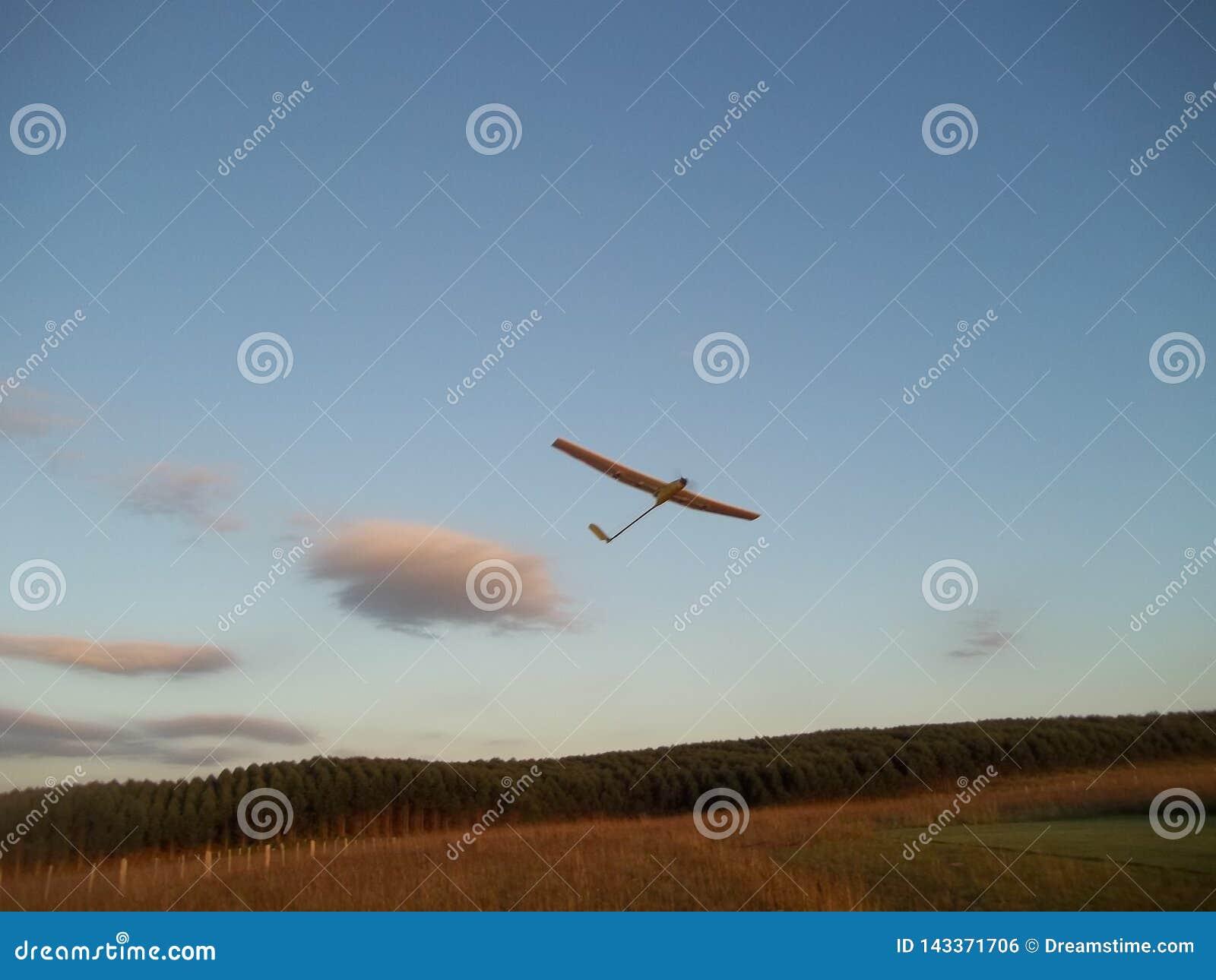 无线电操纵的滑翔机