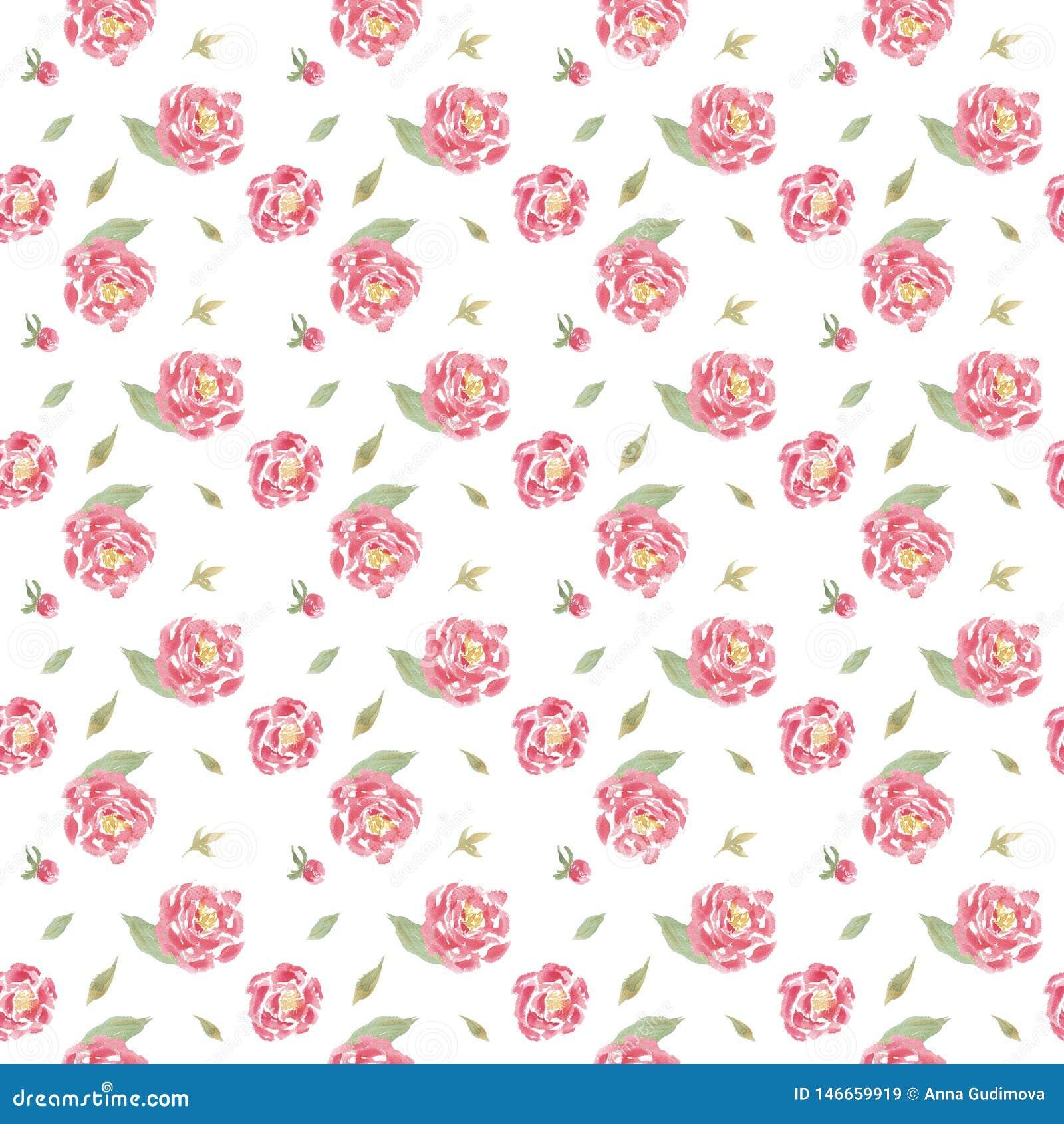 无缝的与桃红色牡丹的水彩花卉样式