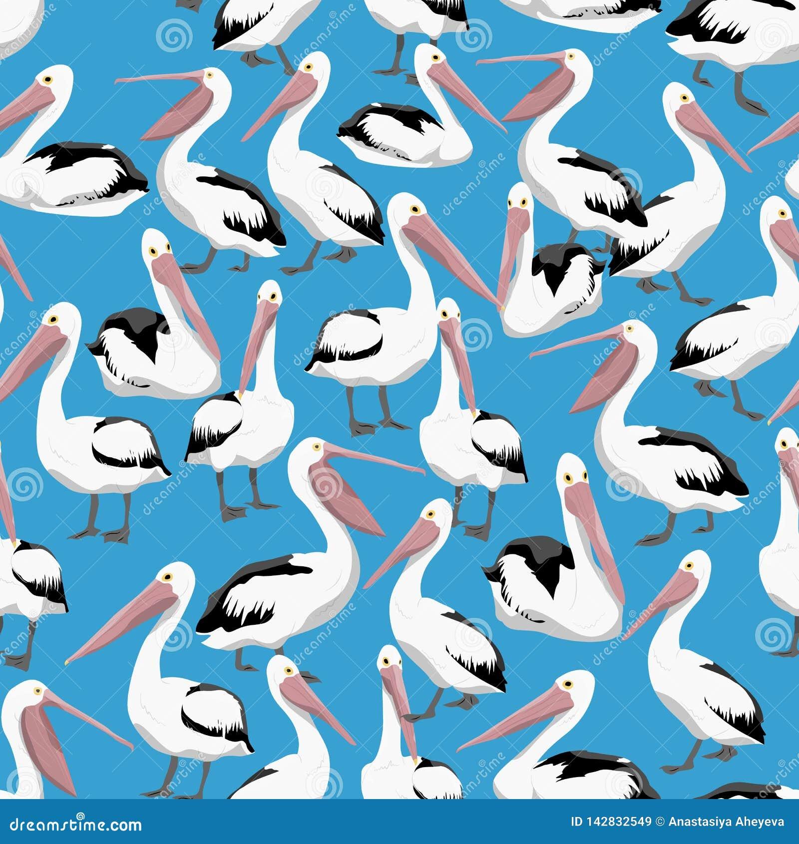 无缝的模式 鹈鹕用在蓝色背景的不同的姿势