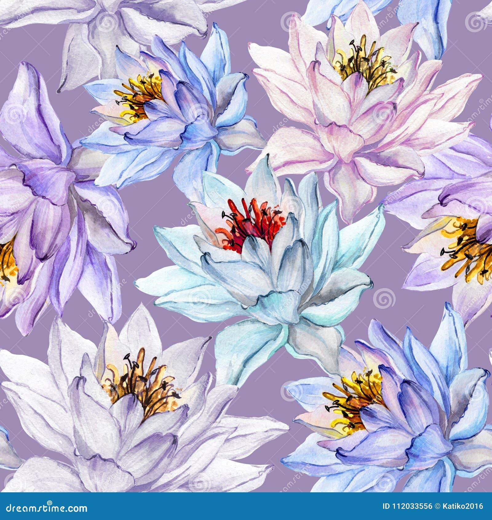 无缝美好的花卉的模式 在淡紫色背景的大五颜六色的莲花 象查找的画笔活性炭被画的现有量例证以图例解释者做柔和的淡色彩对传统 多孔黏土更正高绘画photoshop非常质量扫描水彩