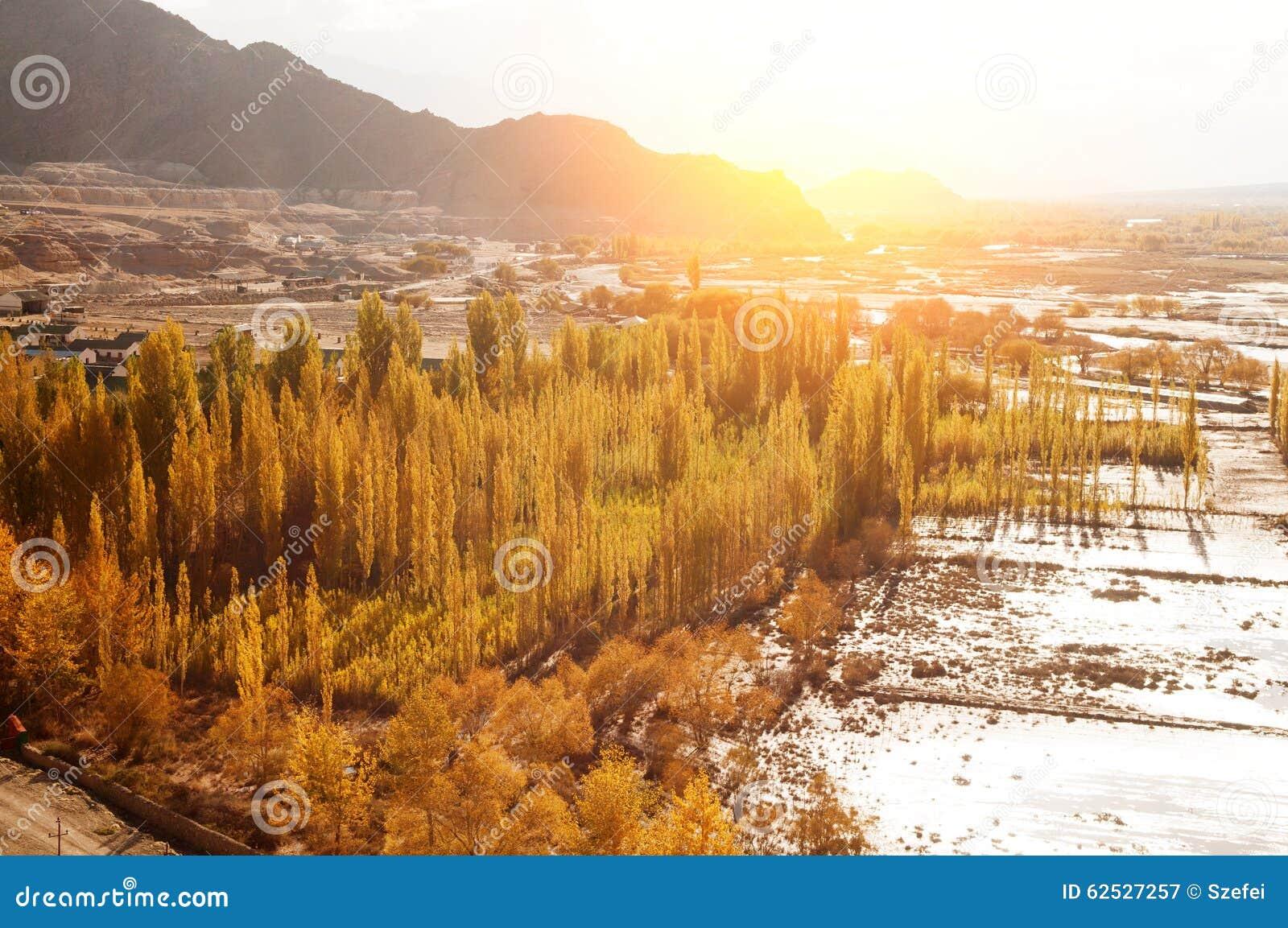 日出的印度河