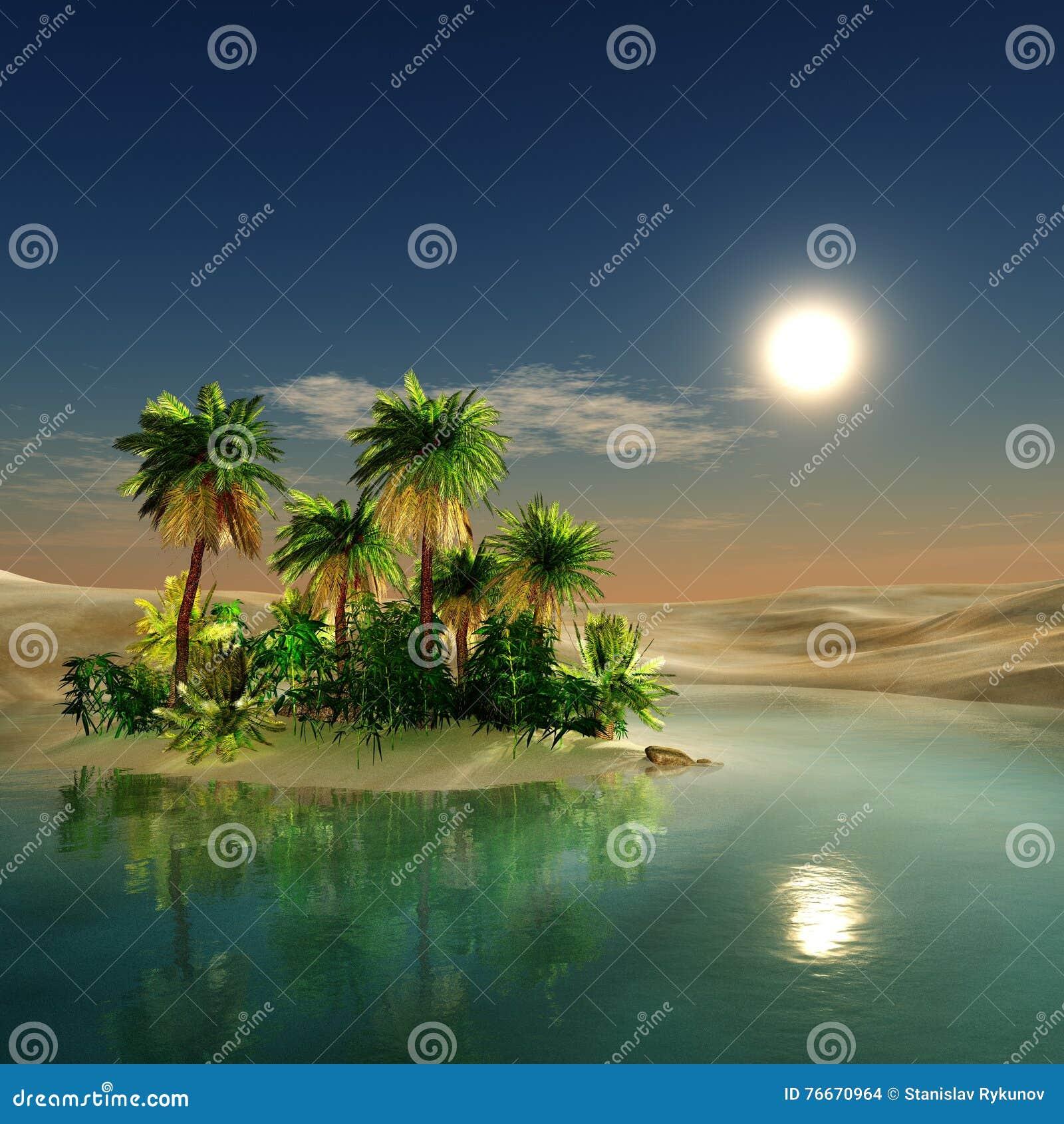 绿洲 日落在沙漠