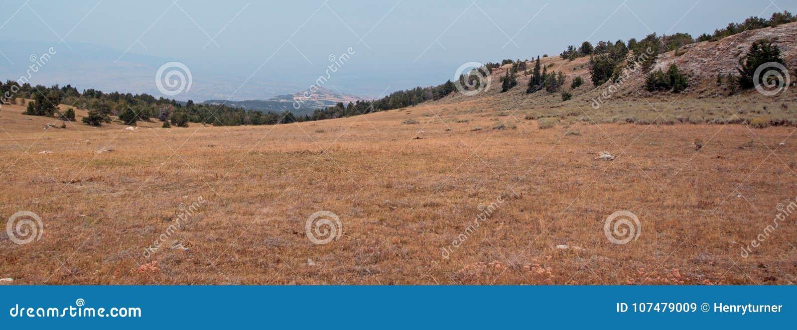 日落/黄昏在忽略比格霍恩全国度假区在普莱尔山的茶杯峡谷在蒙大拿