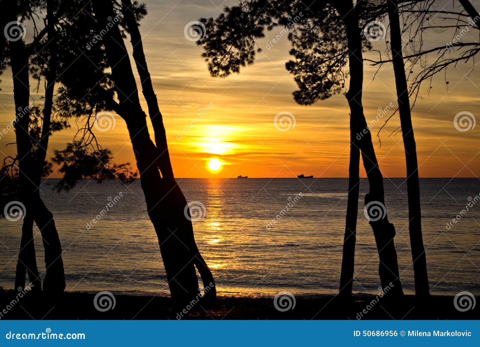 Download 日落 库存照片. 图片 包括有 云彩, 海洋, 采取, 火箭筒, 横向, 全景, 难以置信, 日落, 端口 - 50686956