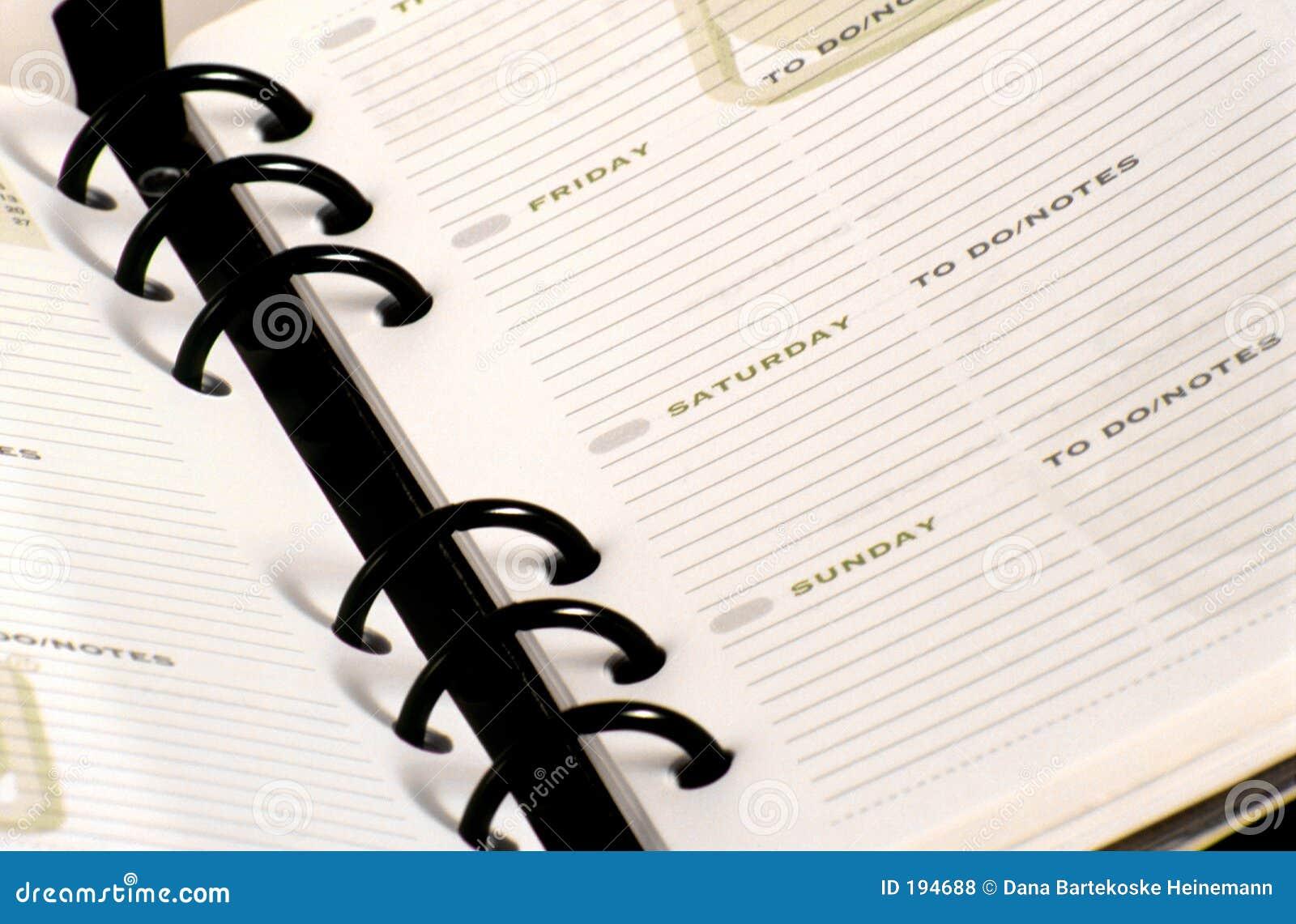 日计划程序