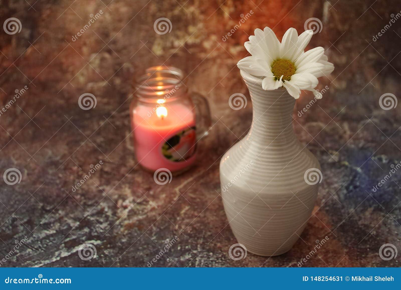 早晨咖啡急忙:一杯咖啡、花在花瓶,干果子和甜点在花瓶,一个灼烧的蜡烛