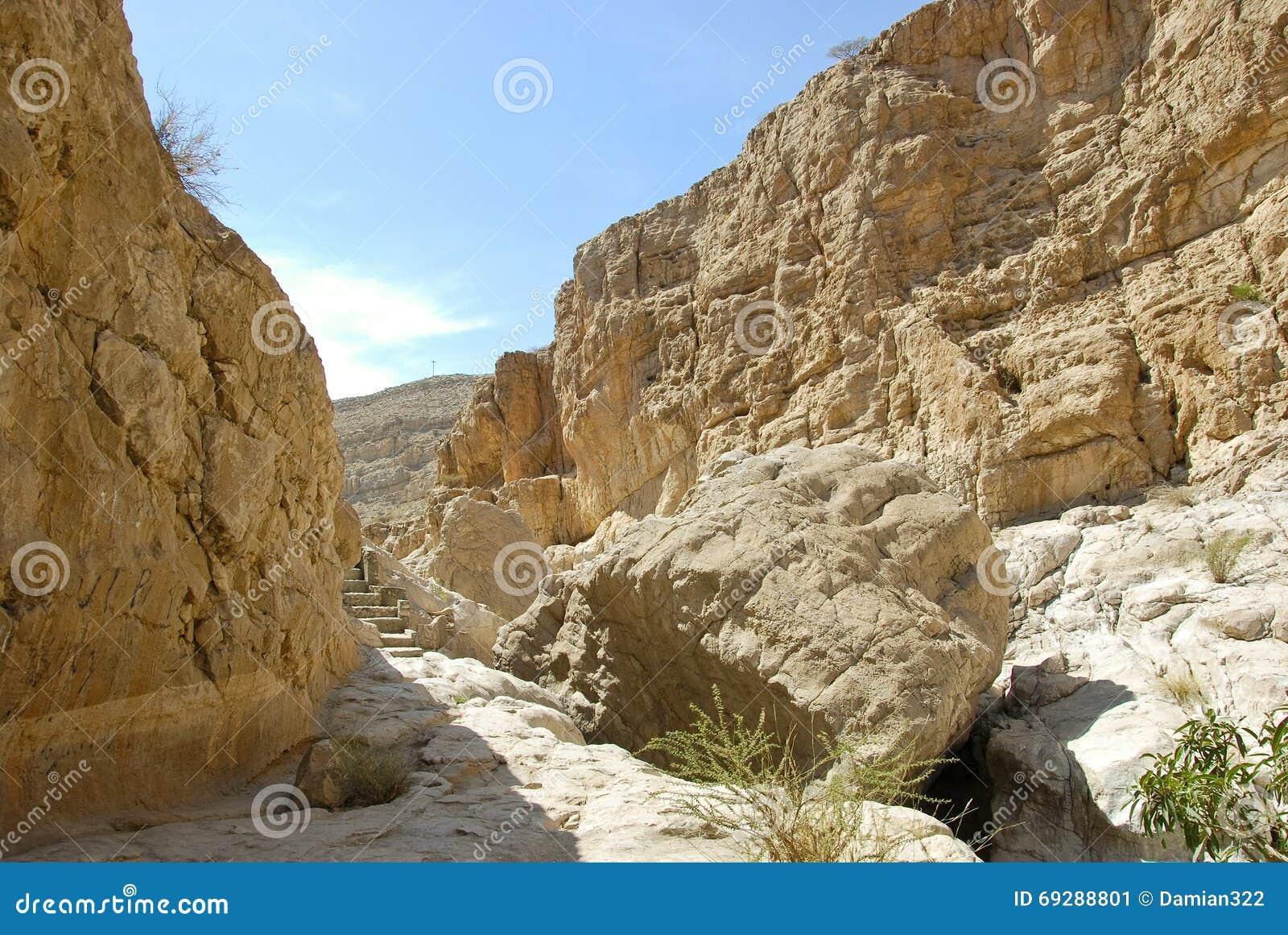 沙z9khya9m._旱谷巴尼卡利德,灰sharqiyah地区,阿曼.