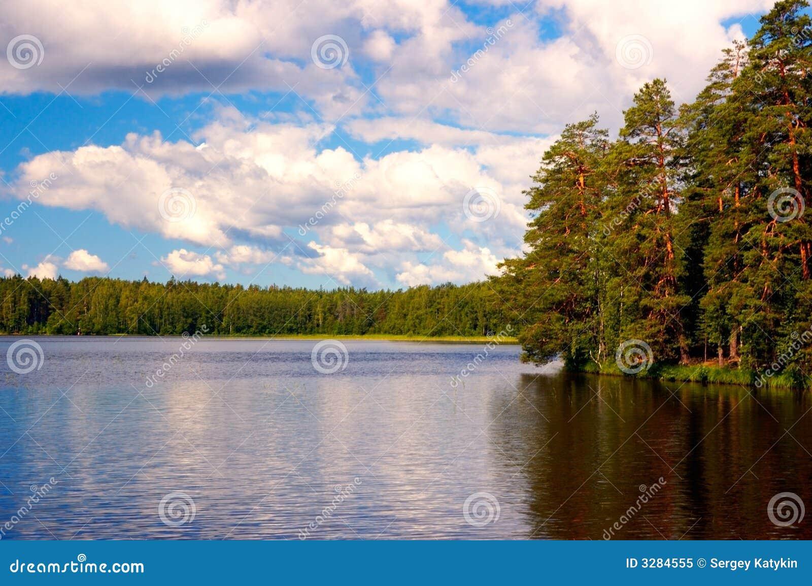 明亮的域湖夏天