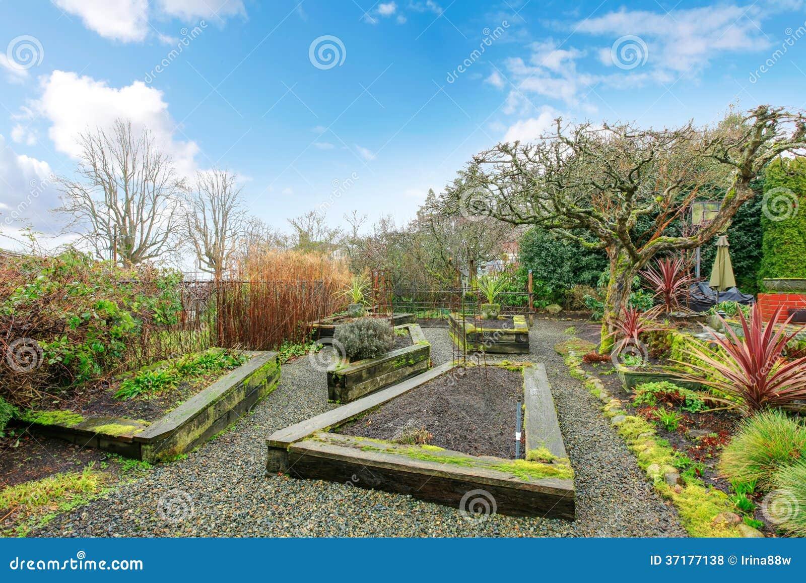 春天有花圃的后院庭院.图片