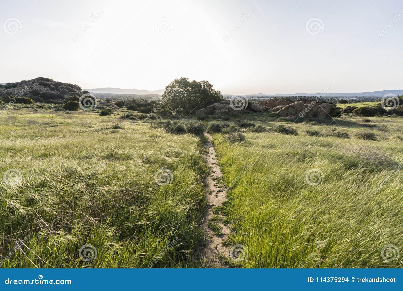春天在圣诞老人苏珊娜通行证国家历史公园的草甸足迹