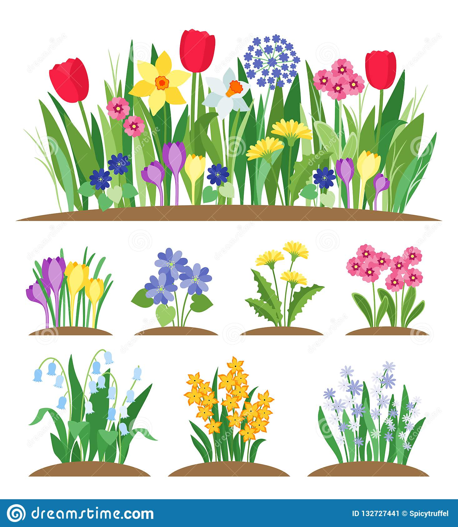 春天庭院花 草和植物 早期的春天开花的传染媒介