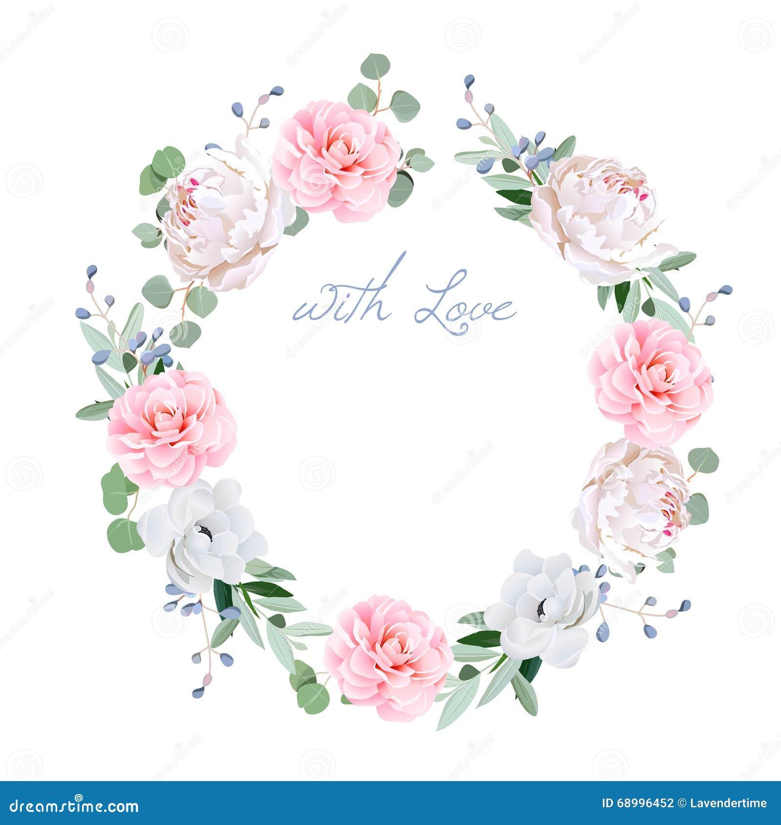 春天新鲜的牡丹,银莲花属,山茶花, brunia开花,并且eucaliptis离开围绕传染媒介框架