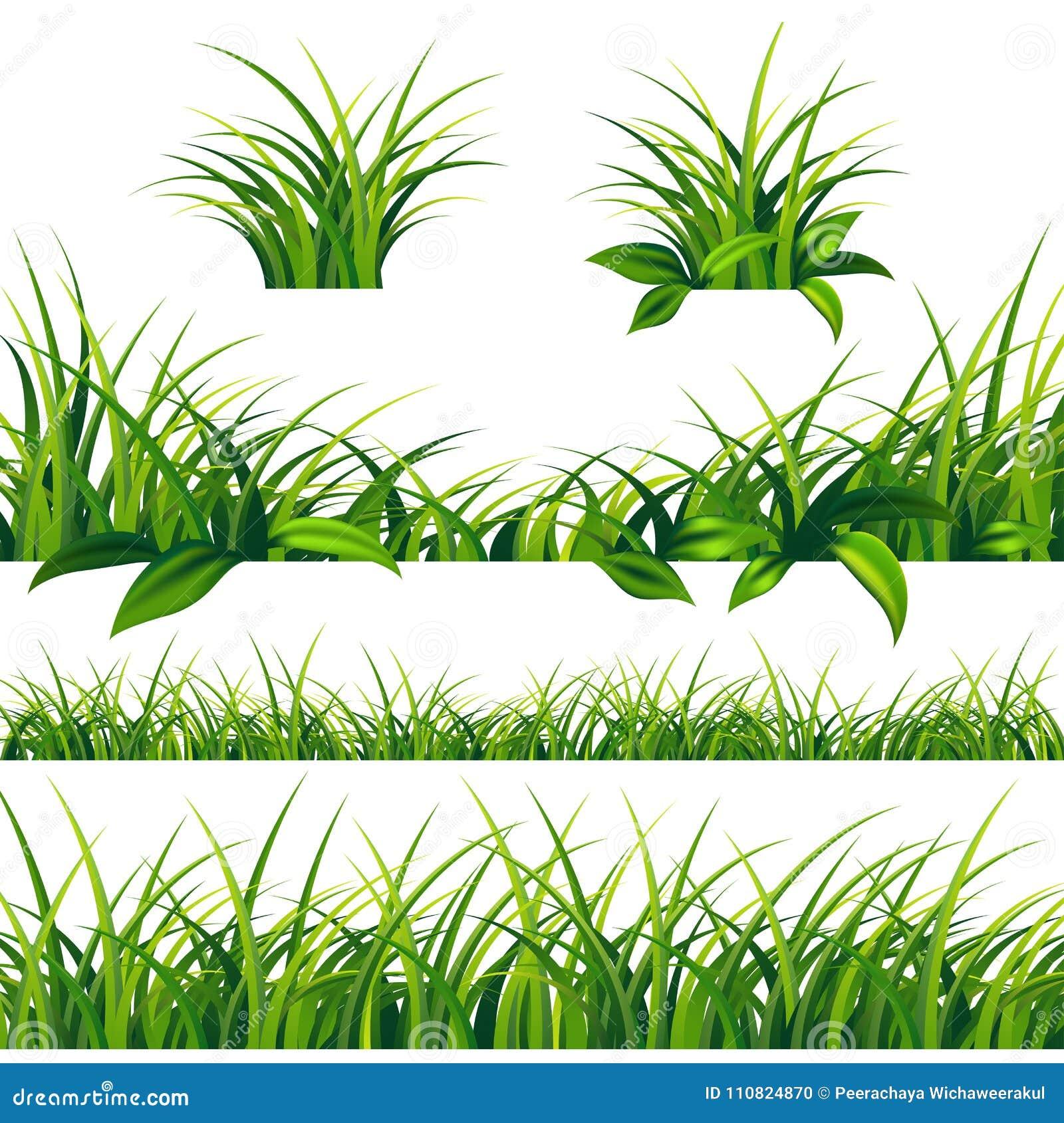 春天被设置的绿草边界