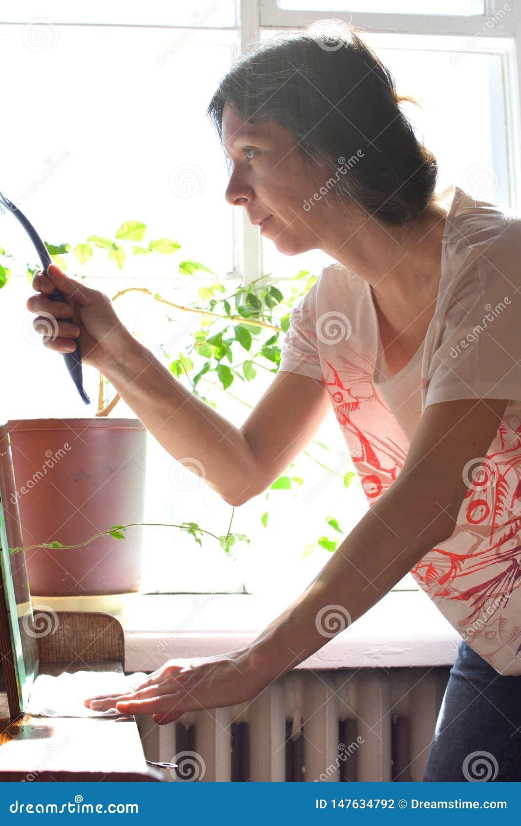 春季大扫除葡萄酒镜子的年轻俏丽的妇女