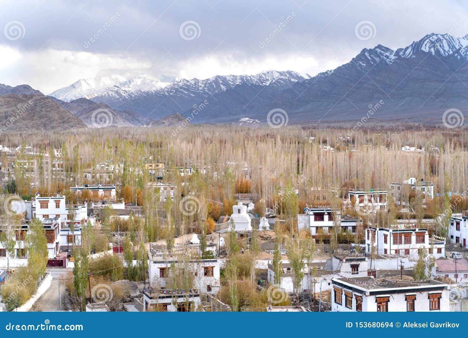 是在西藏样式的修造的印度镇Thiksey