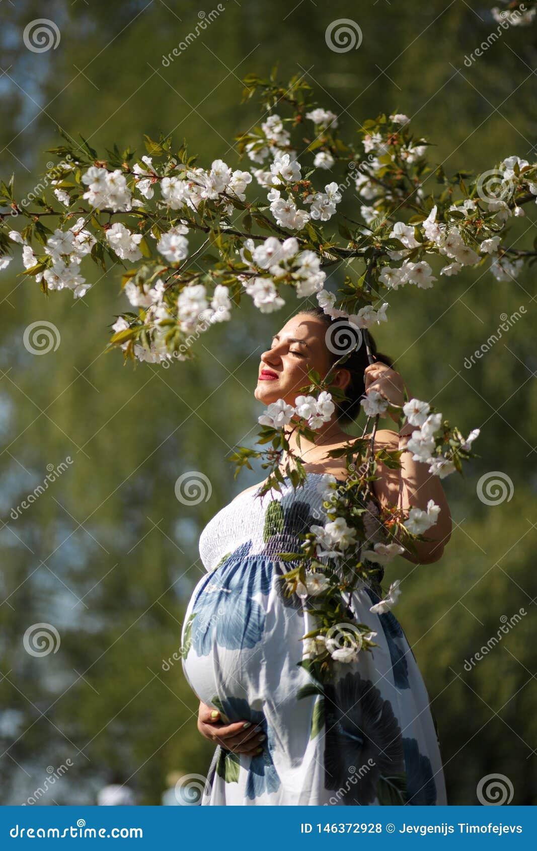 是愉快年轻很快母亲妈妈-年轻旅客孕妇在有开花的一个公园享受她的休闲时间