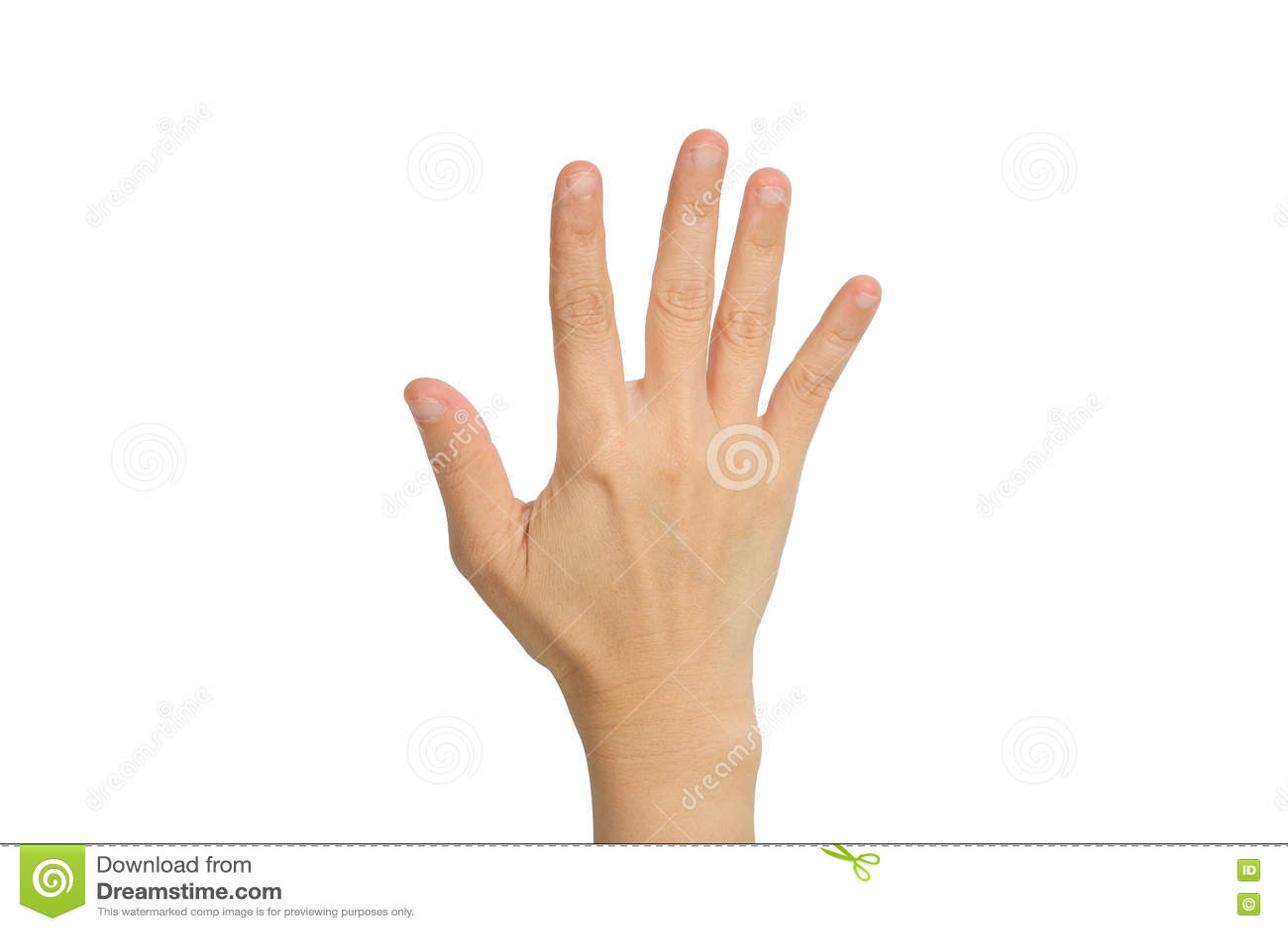 显示五个手指的手