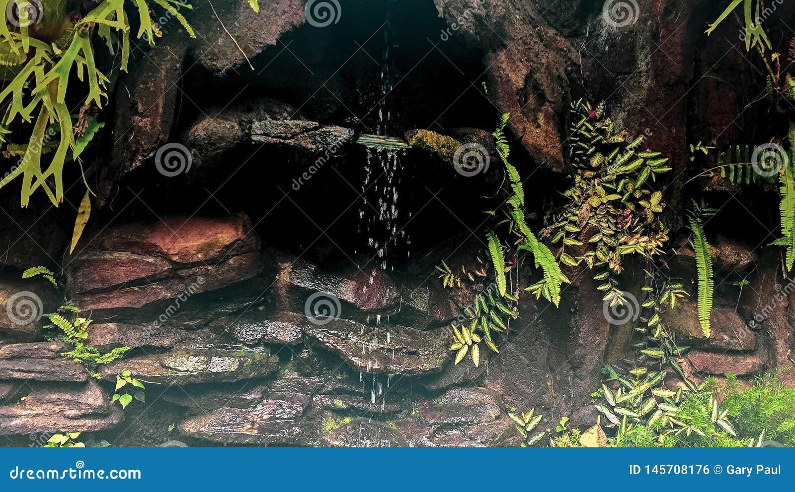 显示小滴水的微型瀑布在巴厘岛,印度尼西亚