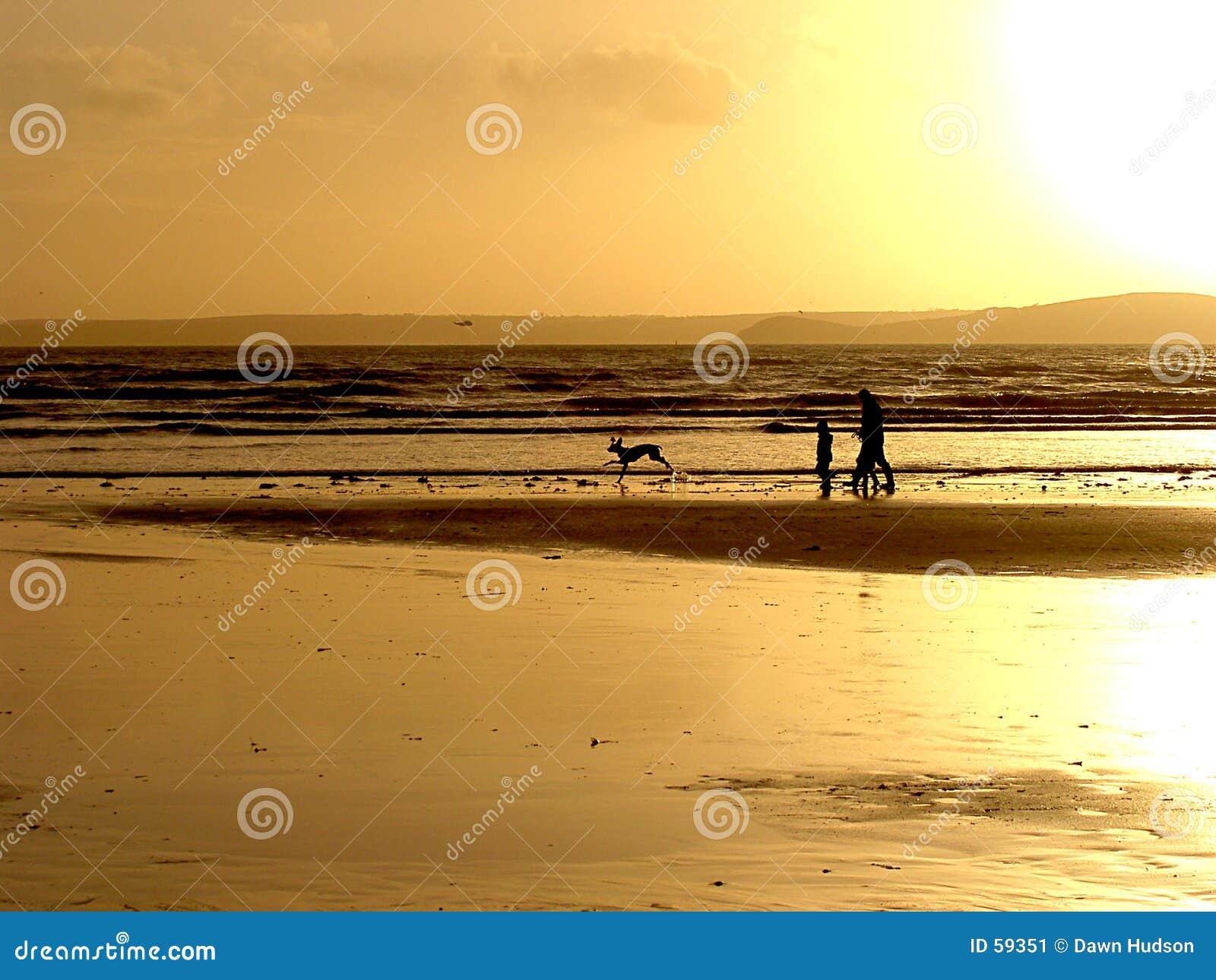 暗淡的海滩
