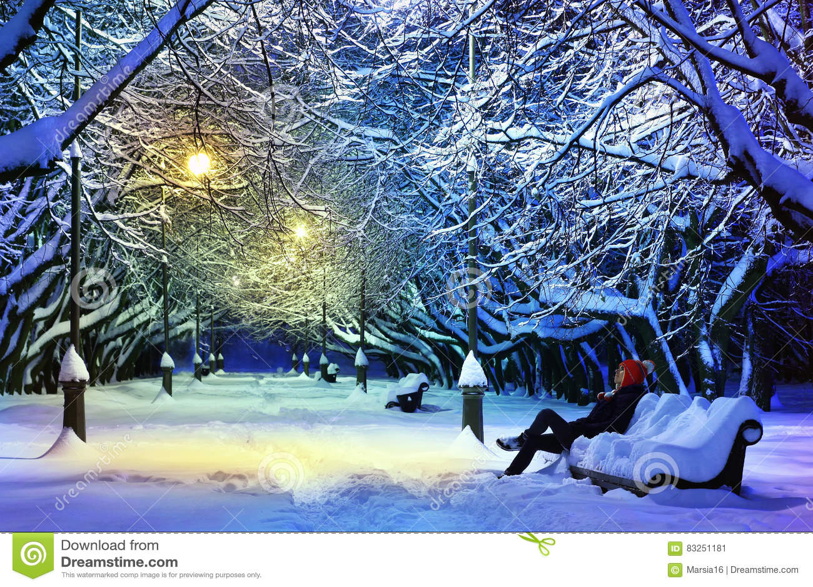 黑暗的冷淡的晚上公园冬天