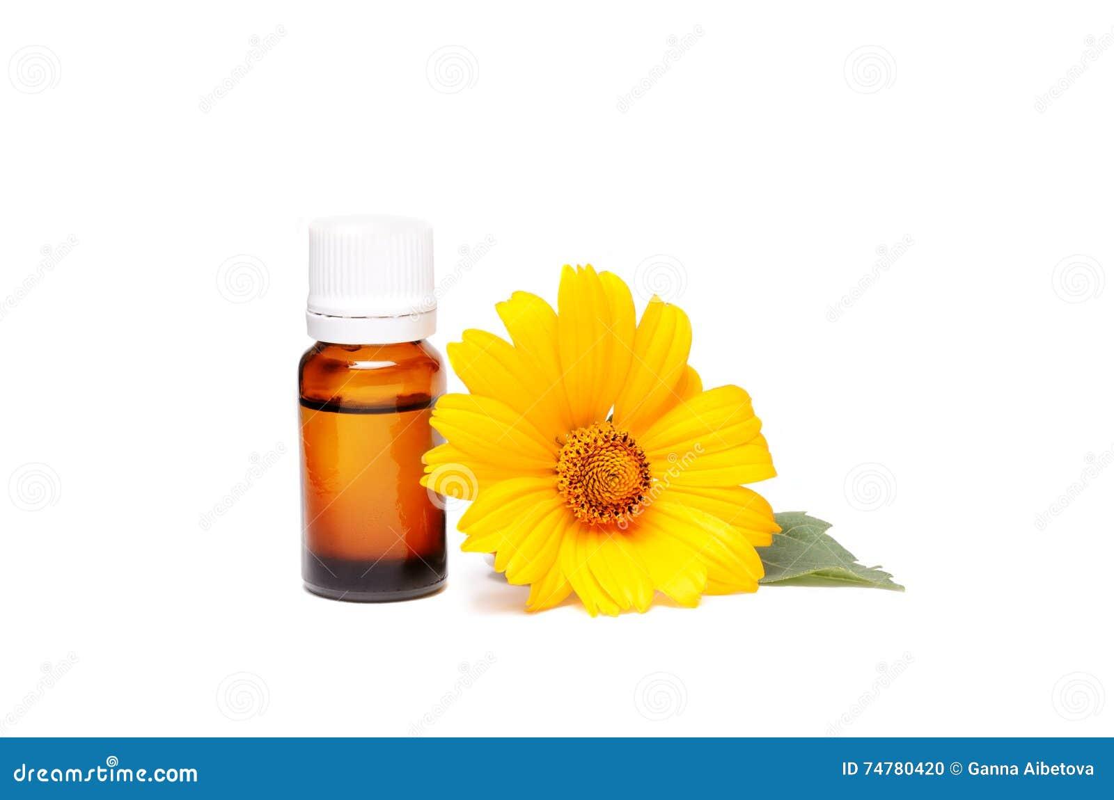 黑暗的化妆瓶草药的芳香油与在白色隔绝的金盏草花 万寿菊萃取物