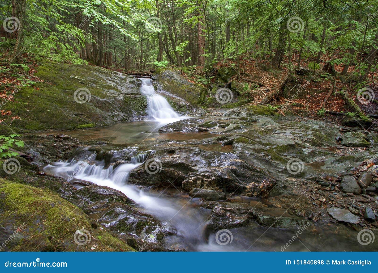 暗藏的瀑布在森林里