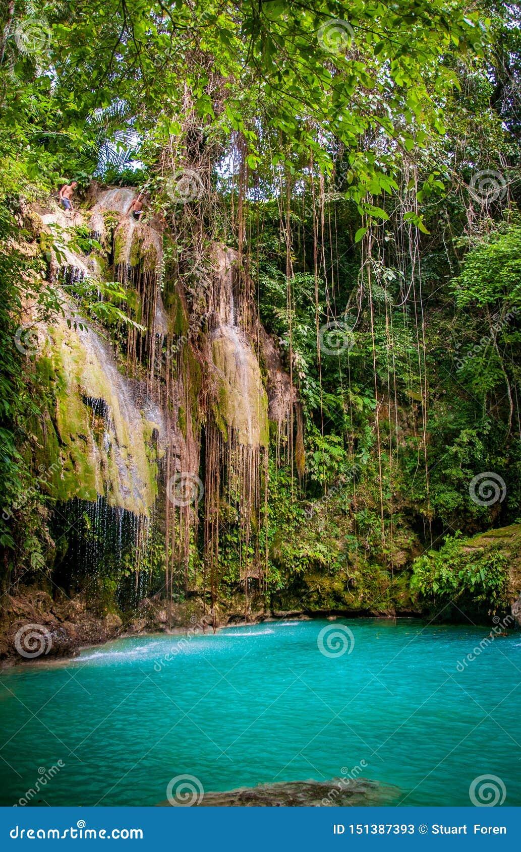 暗藏的paradsie在菲律宾