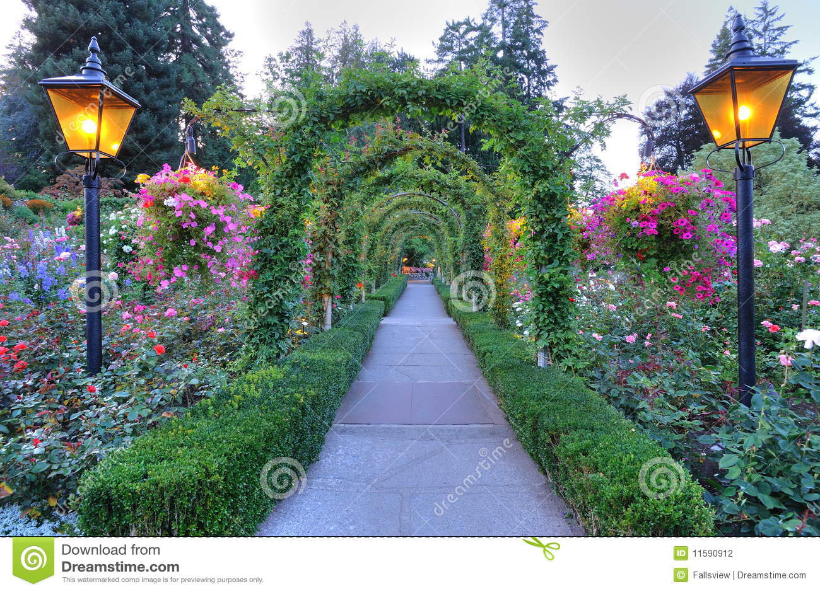 曲拱庭院路径上升了