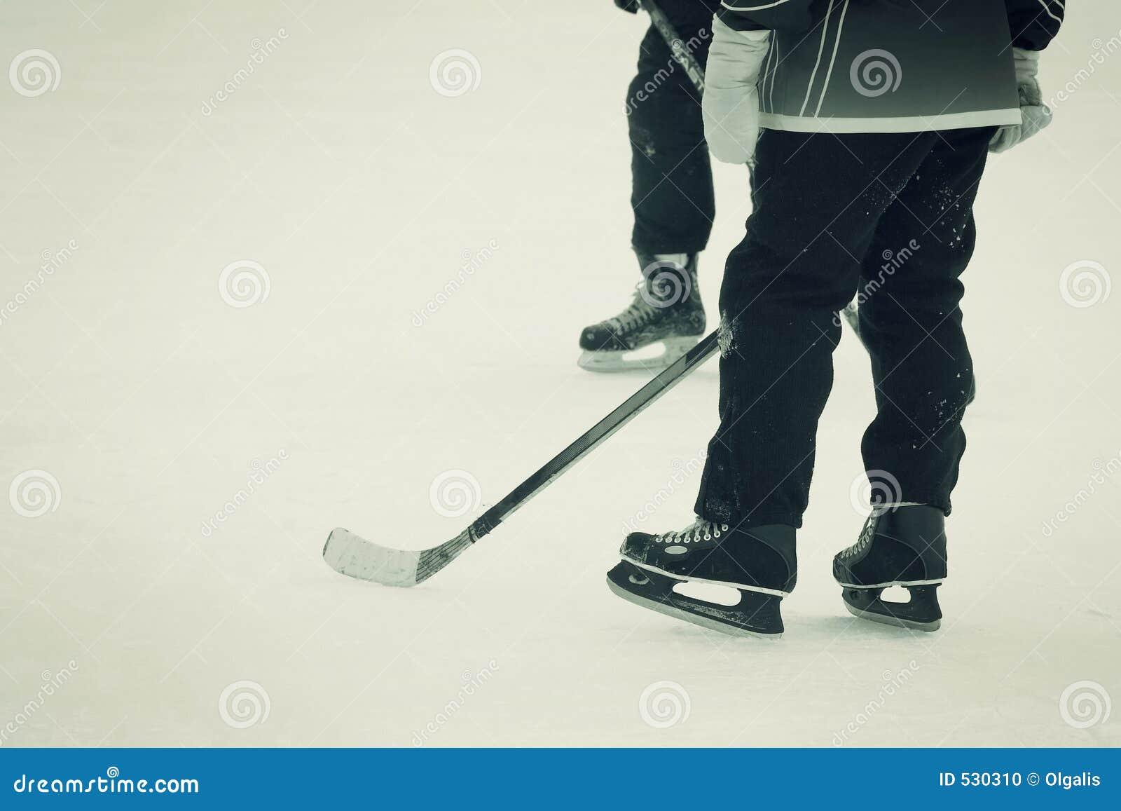 Download 曲棍球运动员 库存照片. 图片 包括有 风险, 激情, 曲棍球, 竞争, 棍子, 一起, 假期, 冰鞋, 视窗 - 530310