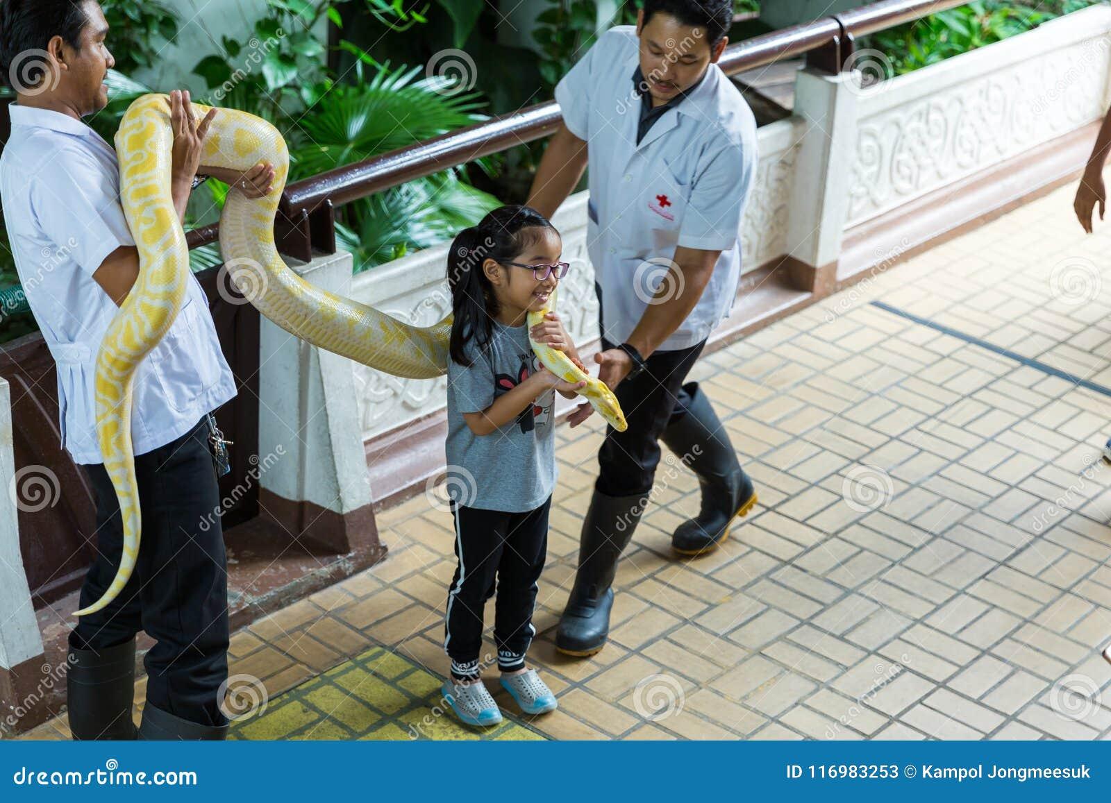 曼谷/泰国- 2018年5月11日:孩子有蛇展示的和显示对游人在Serpentarium,泰国红十字会社会