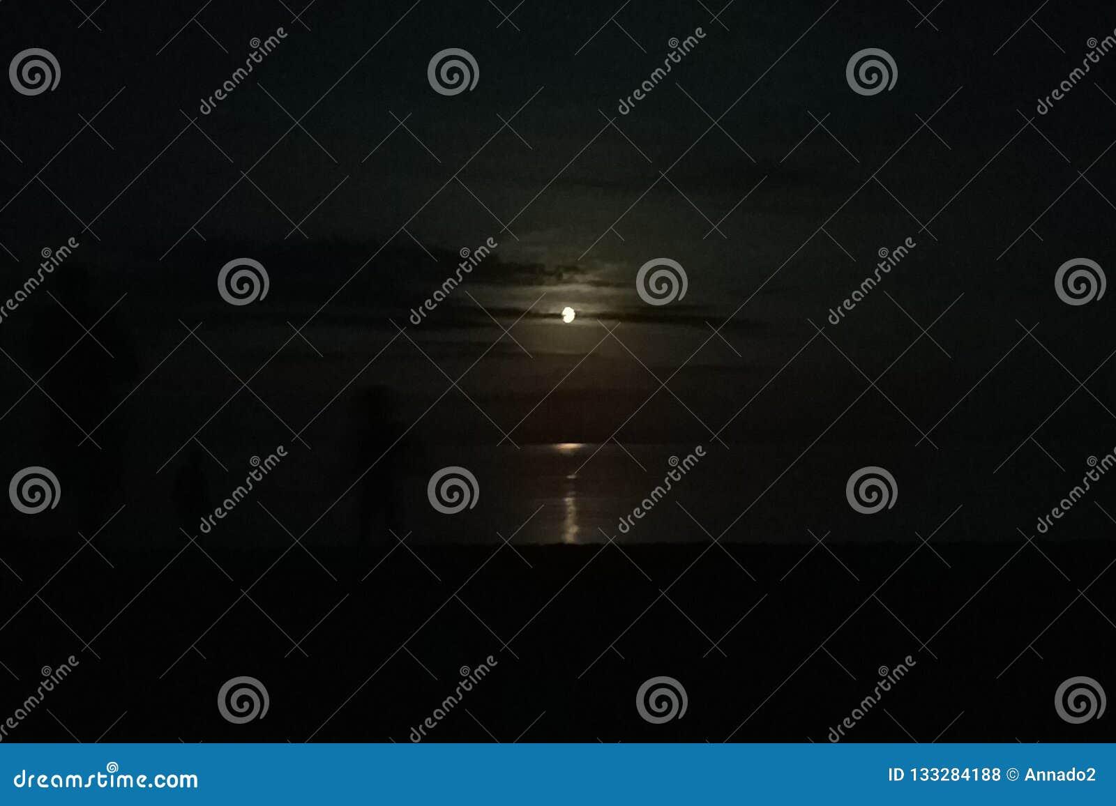 月亮和月光海上