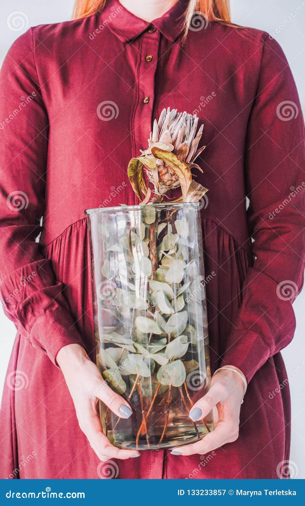 有一个花瓶的女孩在她的有普罗梯亚木的手上