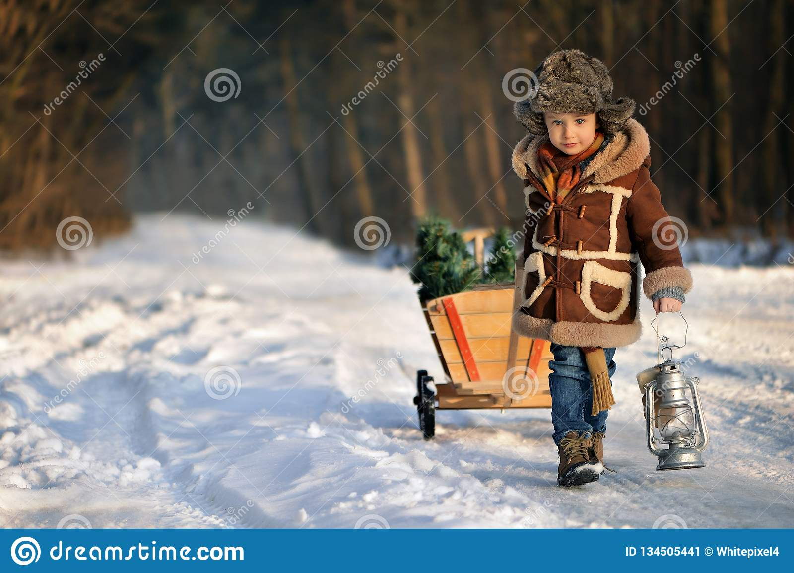 有一棵圣诞树的男孩在冬天森林里
