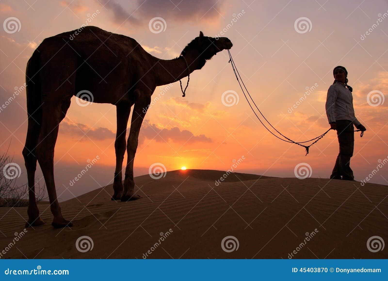 有一头骆驼的在日落,在贾伊斯附近的塔尔沙漠现出轮廓的人