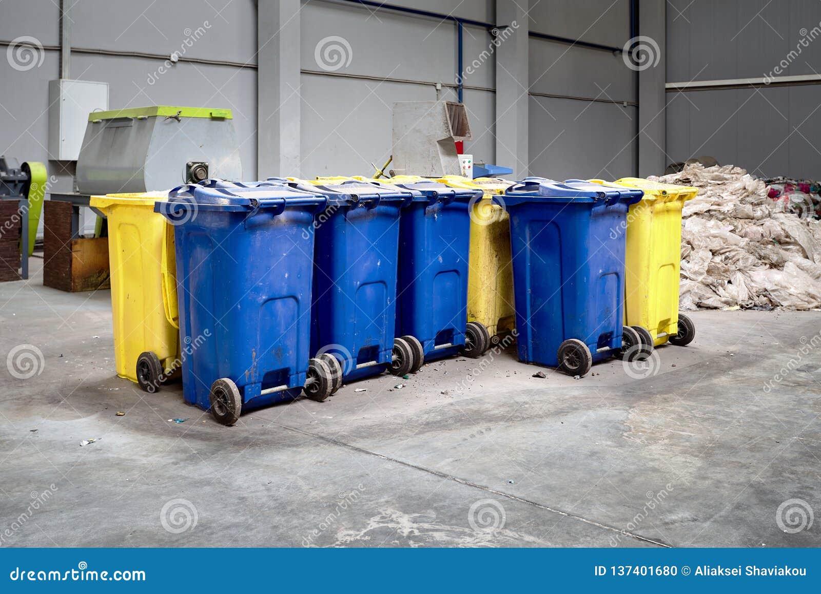 有为进一步处理准备的切细的塑料的容器回炉和回收与切菜机在背景中