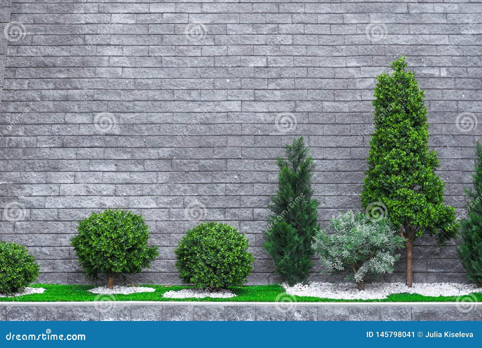有些花和恰好被整理的灌木在成水平的和扔石头的前院
