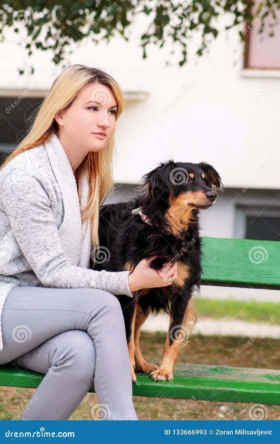 有他的坐和摆在照相机前面的小混杂的品种狗的美女在长木凳在城市公园