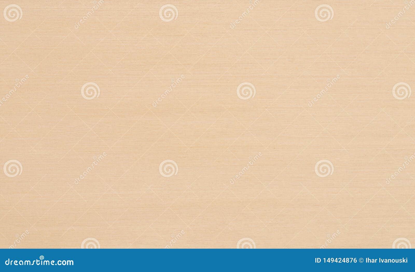 有仿制木头的装饰委员会完成的家具和厨房的