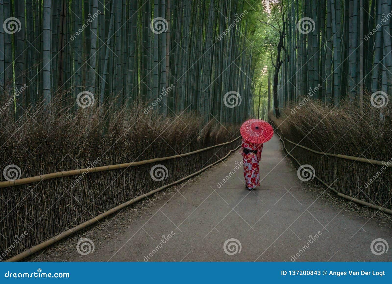 有伞的艺妓在Arashiyama竹森林里