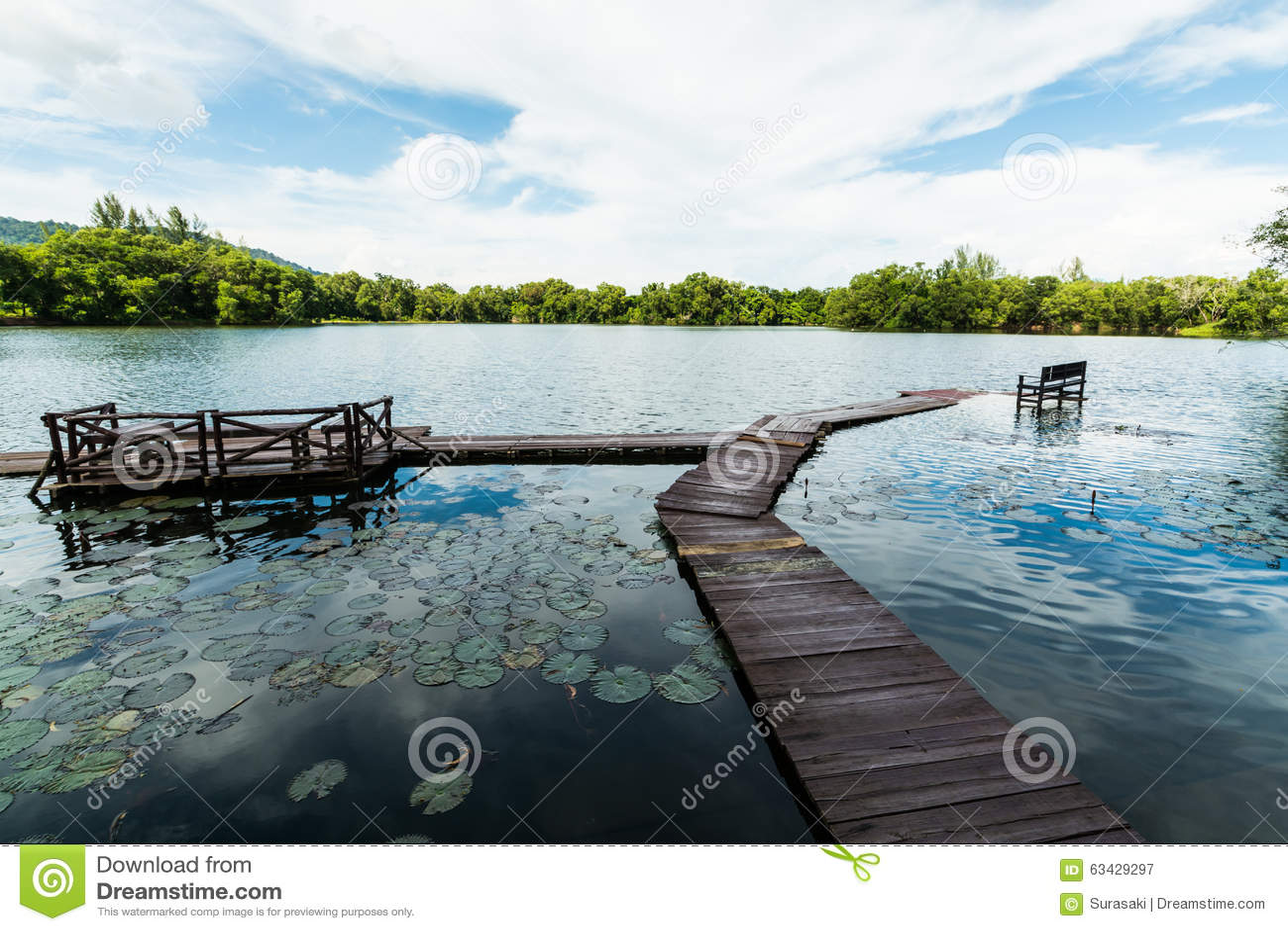有多云蓝天的自然池塘