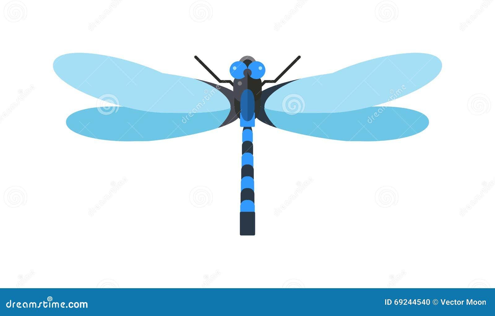 有大眼睛自然昆虫动物野生生物传染媒介例证的蜻蜓anax imperator男性蓝色皇帝