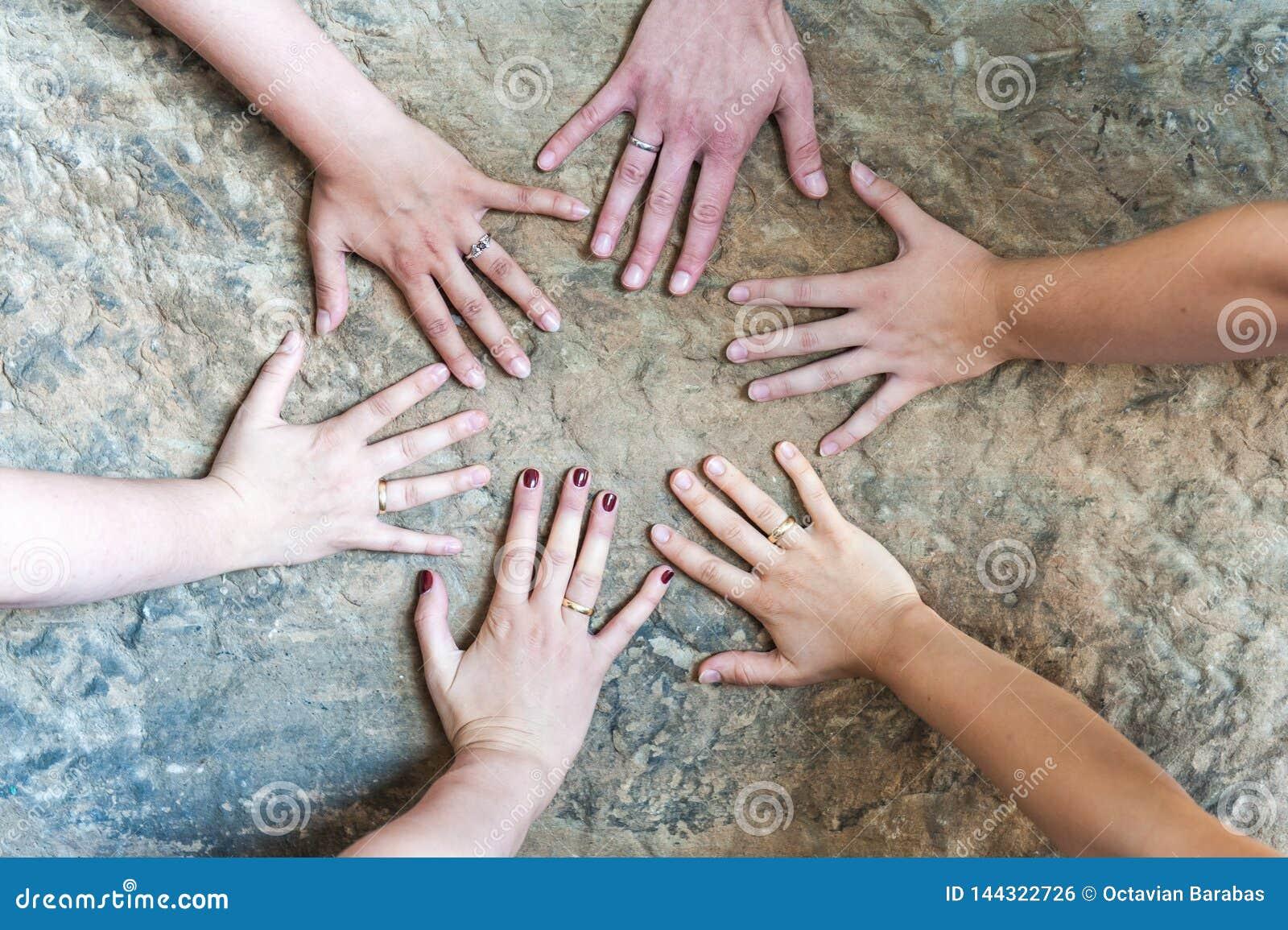 有夫之妇的手有结婚戒指/一妇女的没有圆环